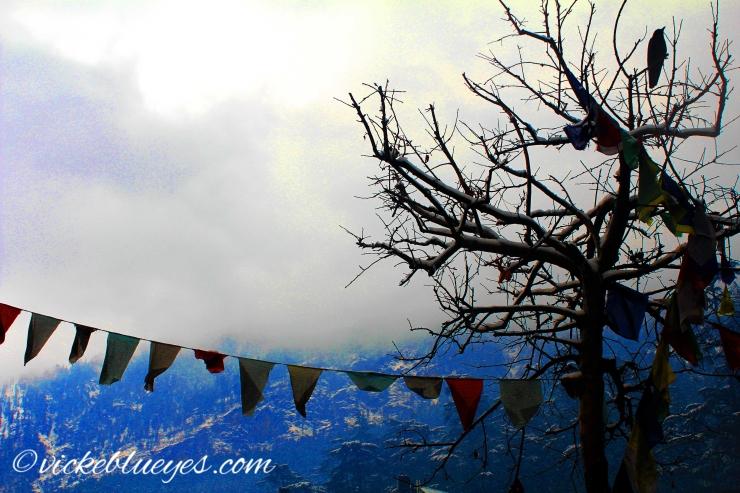 The Mist in Manali