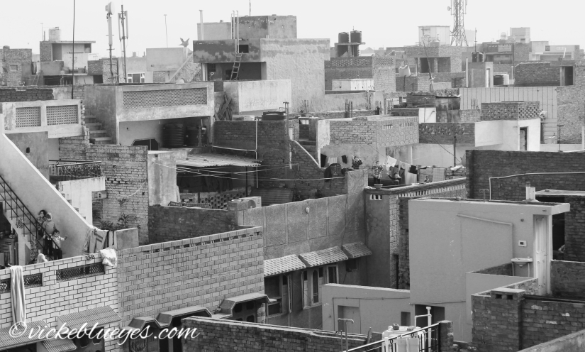 rooftops of amritsar, spot the screaming kids!