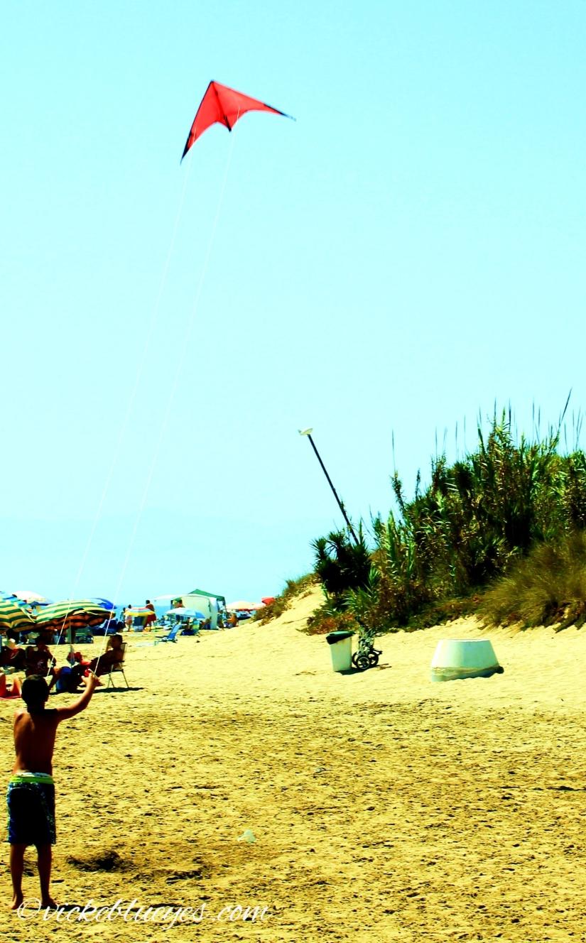 Marbella Seafront