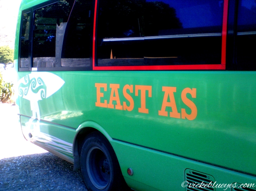 Kiwi East as Bus