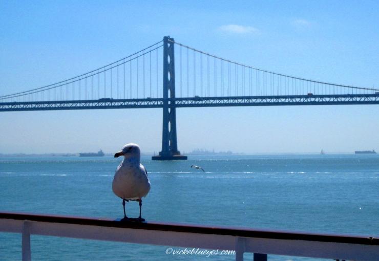 The Golden Bridge